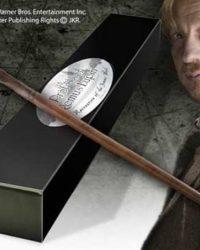 Varita de Professor Remus Lupin